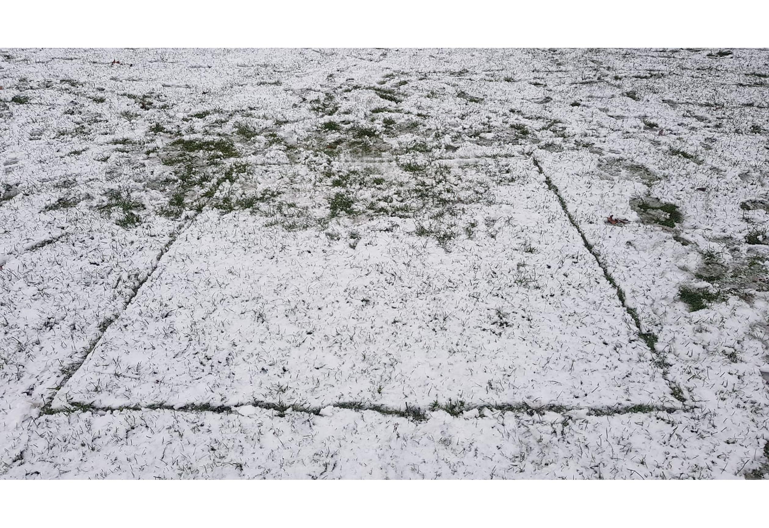 2×2 Distancing Squares I 2021